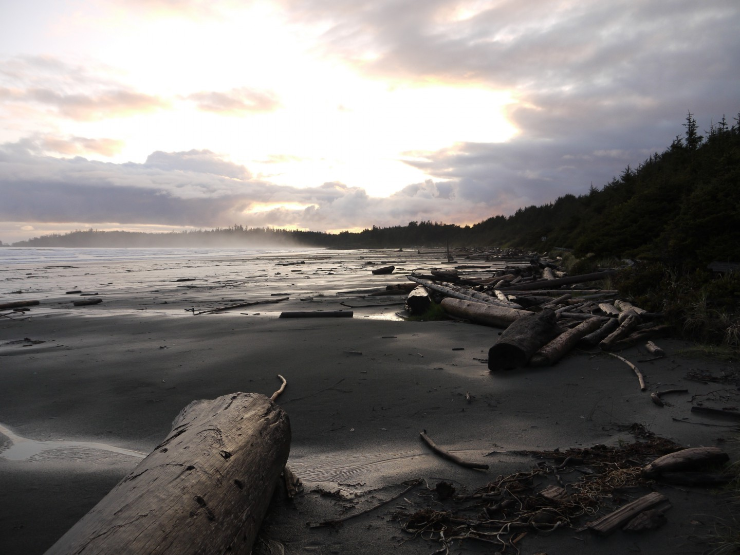 Tofino 003- Photo Credit- Flickr - Bernard McManus