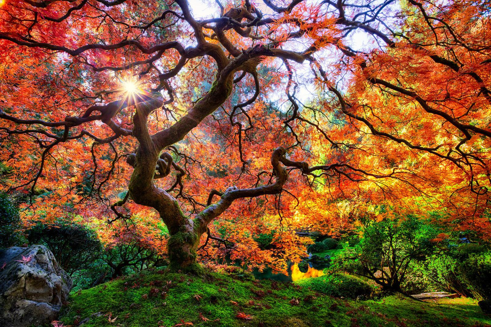 Washington Park in Portland