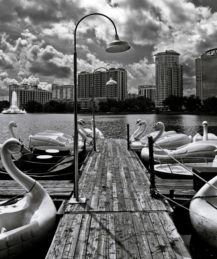 Swan Boats at Lake Eola Park