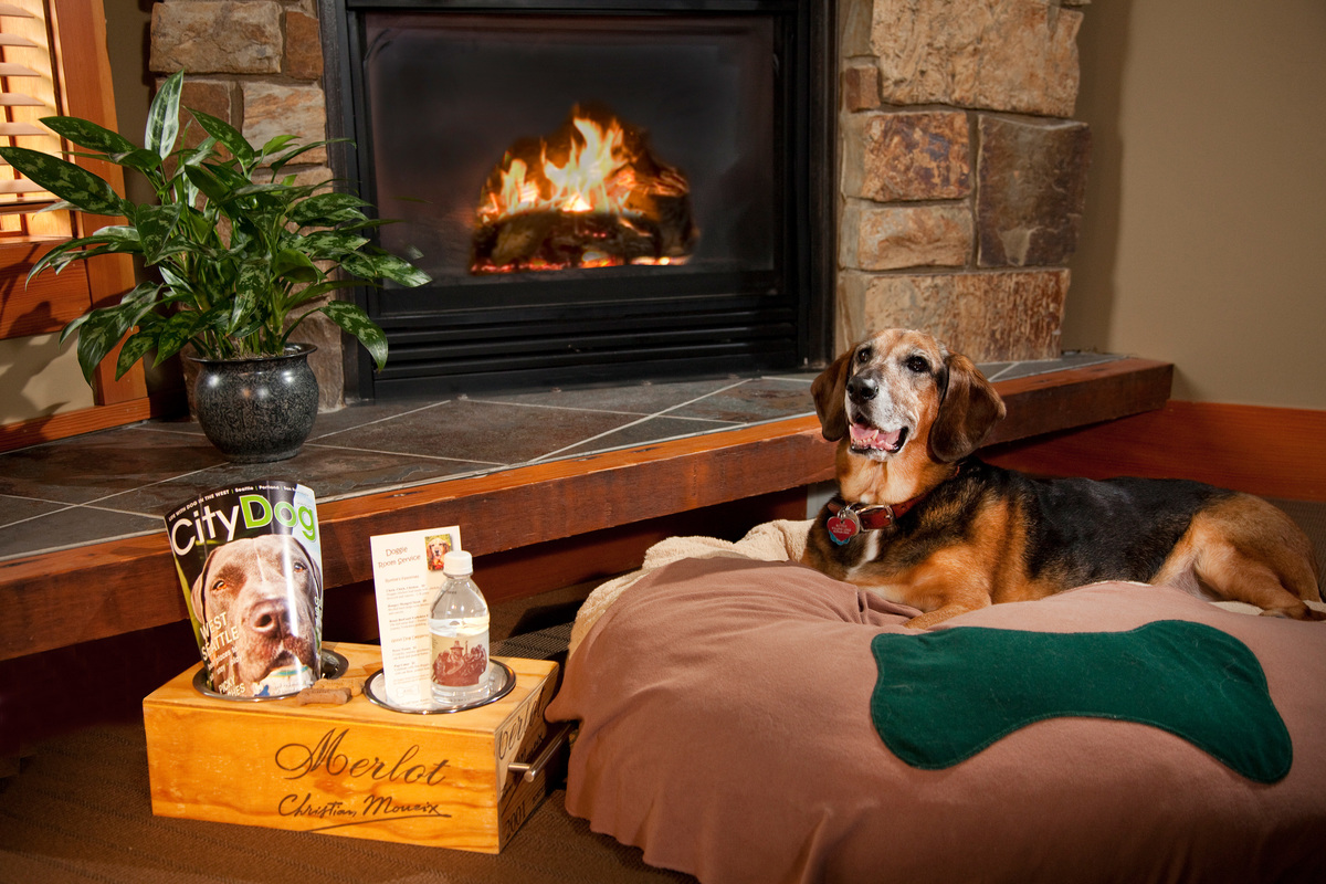 Dog-Friendly Willows Lodge Hotel Seattle