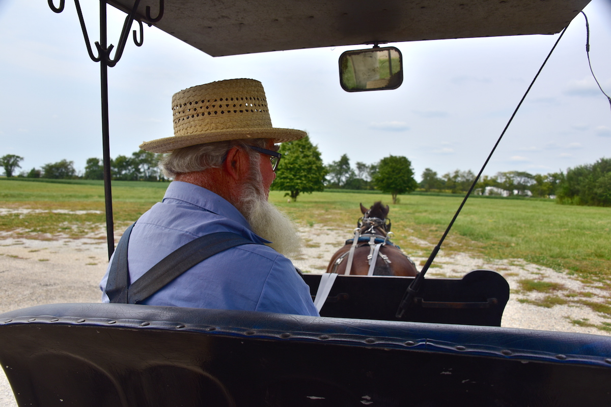Amish Carriage Ride