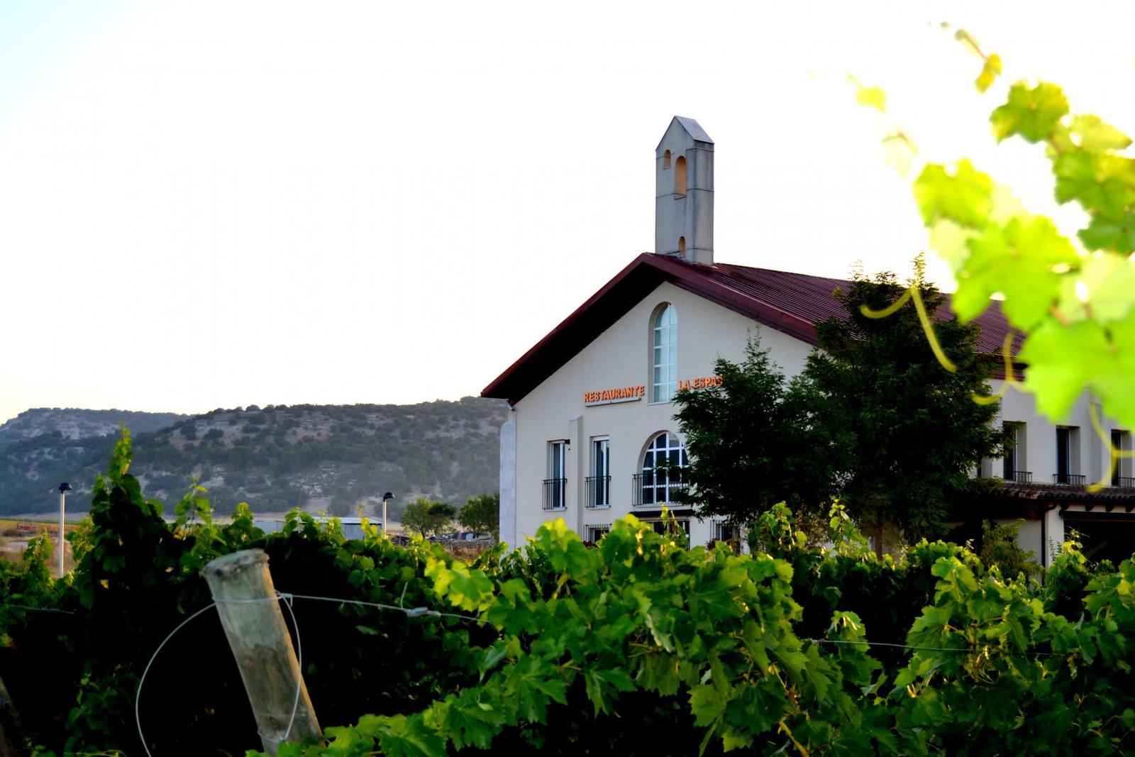Restaurante del Hotel Emina rodeado de viñedos