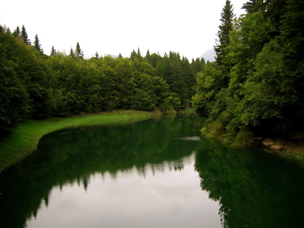 mundo rural Selva de Irati