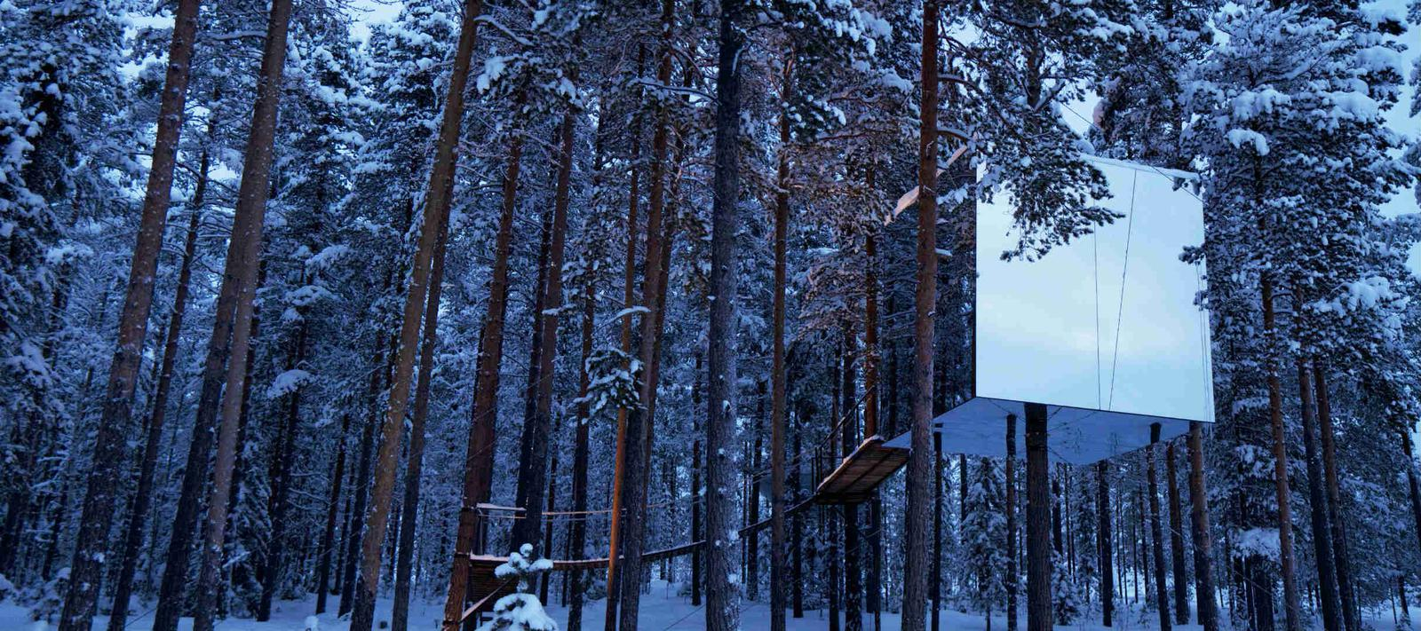 Habitación cubo en un árbol en Treehotel en Suecia