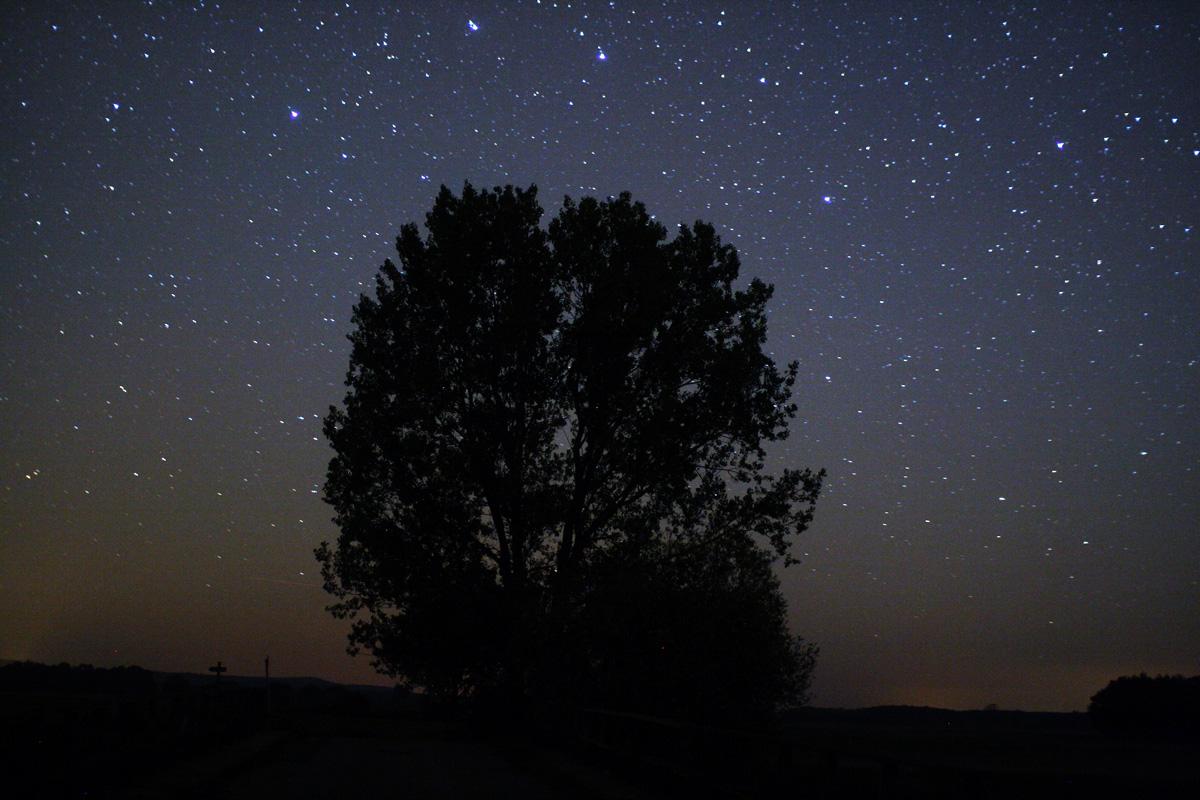 ver las estrellas turismo astronomico stargazing skywesthavelland
