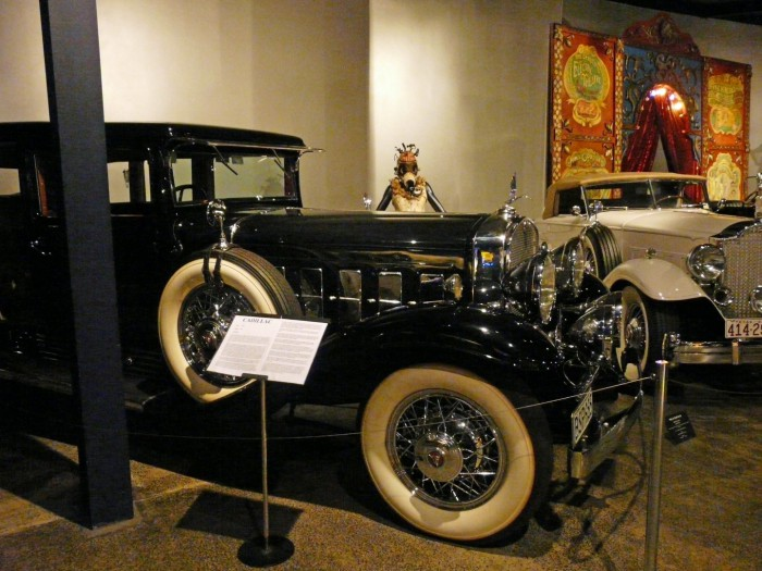 World of WearableArt & Classic Cars Museum (C) Jane Nearing