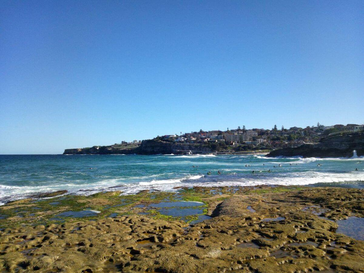 Budget guide to Sydney: do the Bondi to Bronte coastal walk
