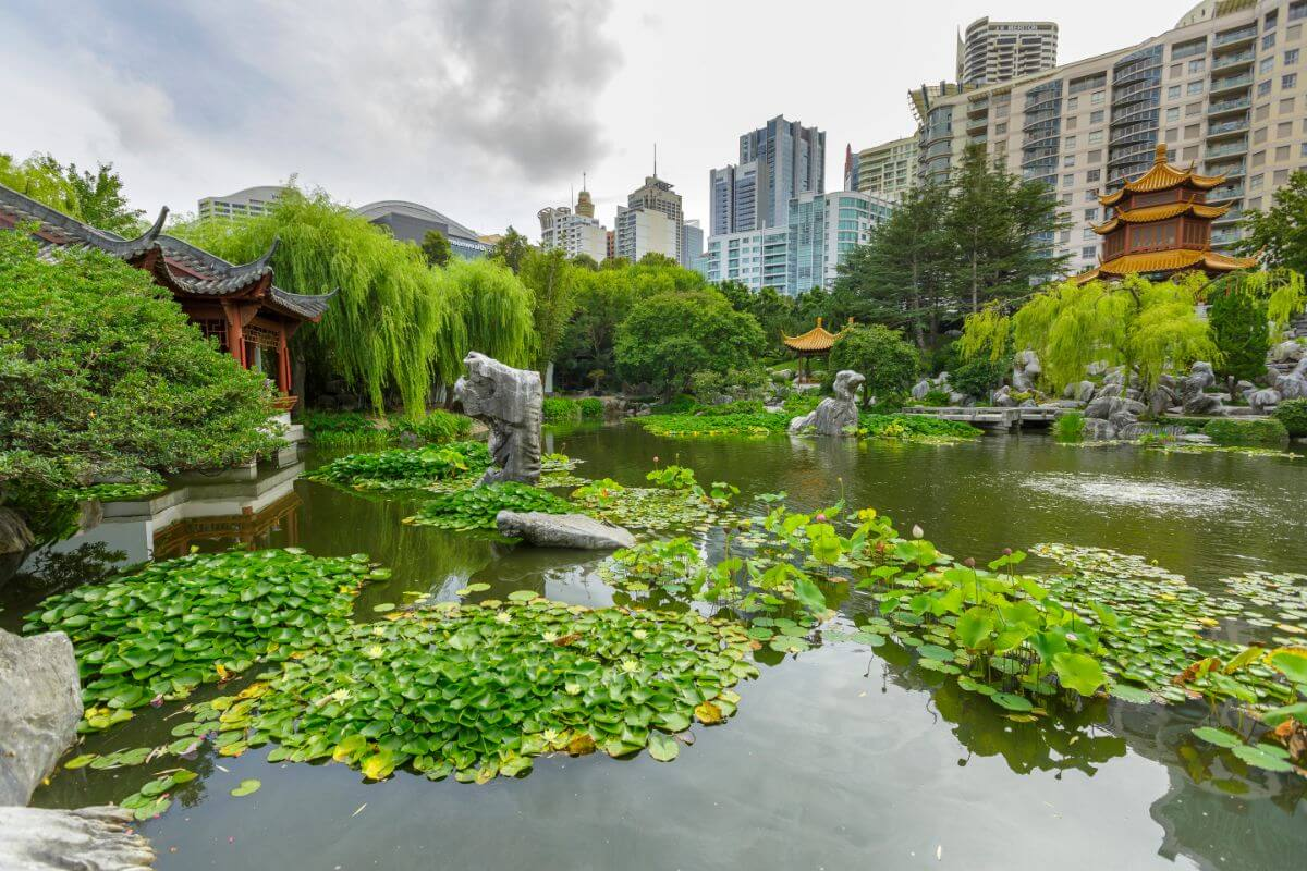 Buget guide to Sydney: check cout the Chinese Garden of Friendship