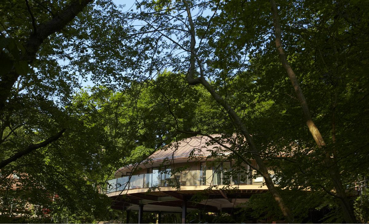 tree house chewton glen