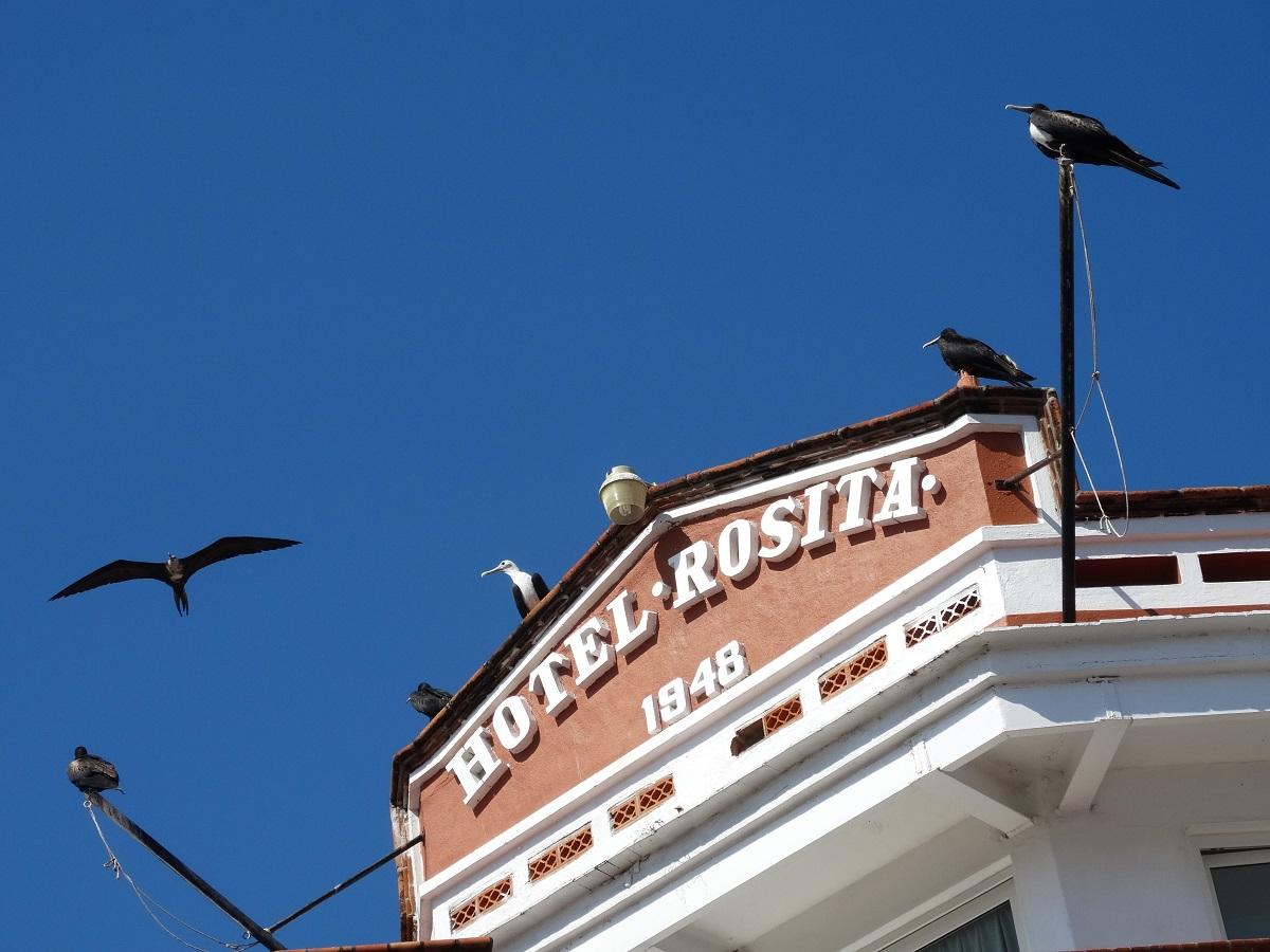 Hotel Rosita Vallarta