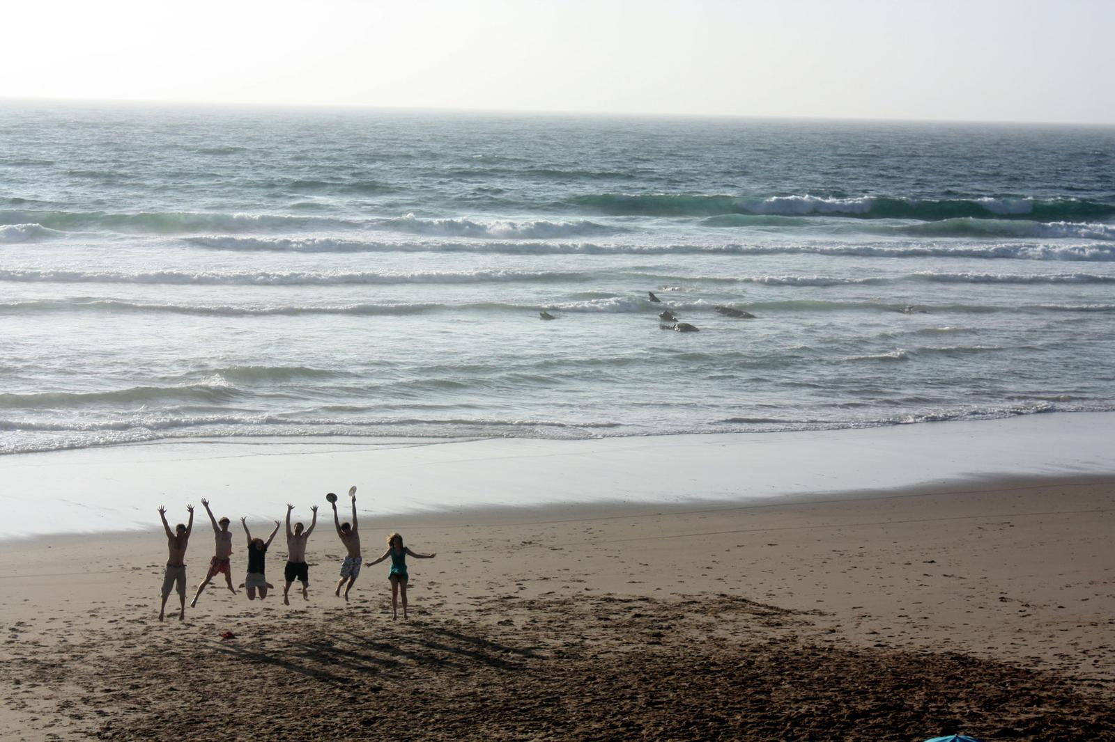 Amigos Praia