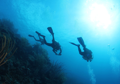 scuba diving arraial