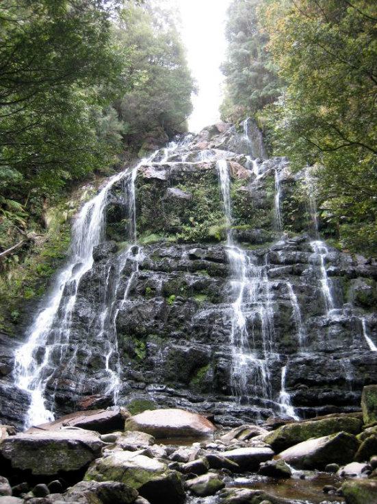 Nelson Falls - Franklin River Nature Trail. Tasmania