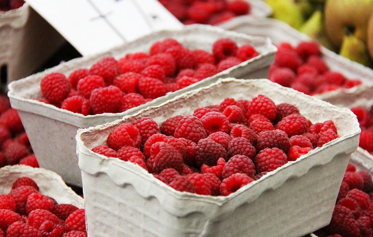fruits-606555_1280