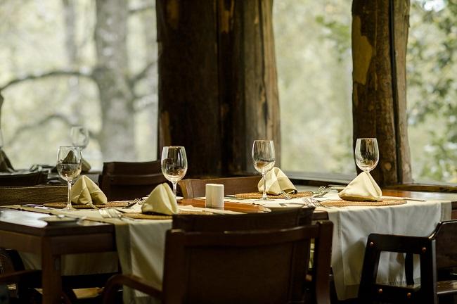 Table dressée avec vue sur le forêt dans le restaurant du Nothofagus Hotel & Spa