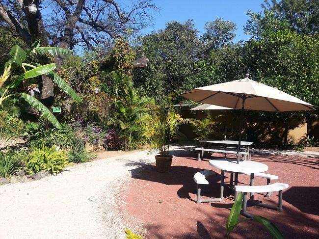 Jardin du Tubohotel de Tepoztlan