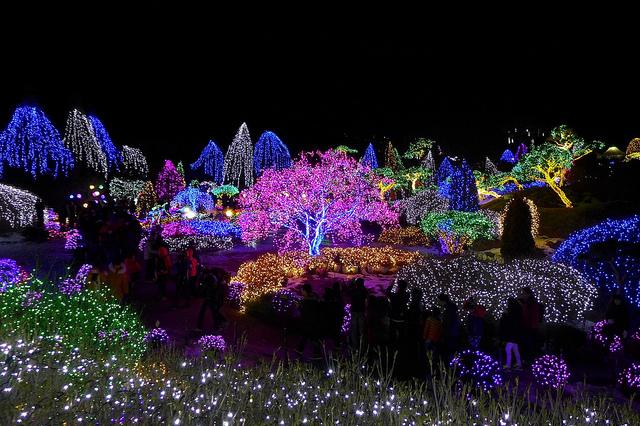 Illuminations et décorations de Noel au Garden of Morning Calm Starlight Festival - Corée du Sud