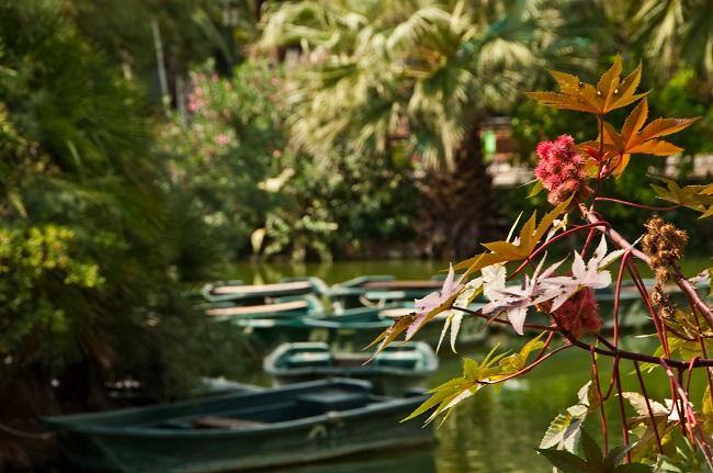 Barques sur l'eau au Parc de la Ciutadella à Barcelone