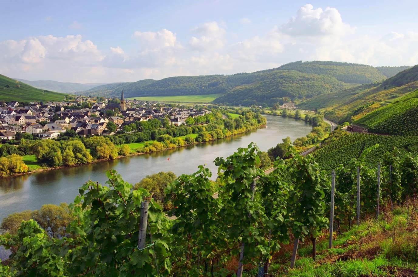 The Wine Region Moselle River Valley προορισμοι γερμανια