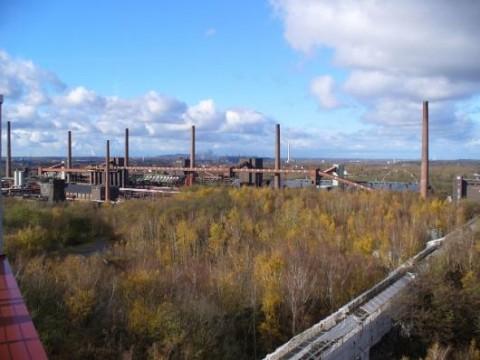 Zecke Zollverein: Blick auf die Kokerei