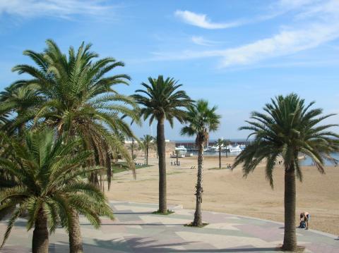 "Blick auf die Promenade der ""Platja de la Barceloneta"""