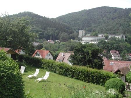Blick in die grüne Landschaft vom Hotel aus
