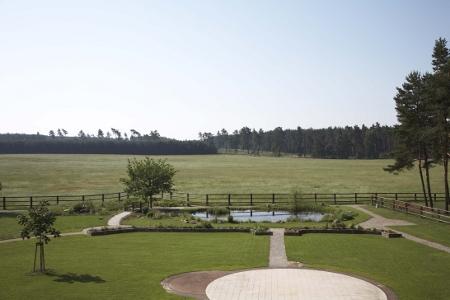 Blick vom Garten des Hauses auf die grüne Weide