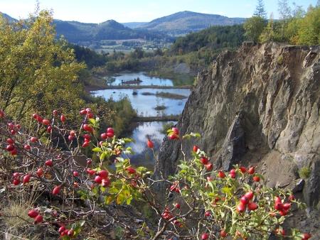 Ansicht des renaturierten Steinbruchs in der Umgebung