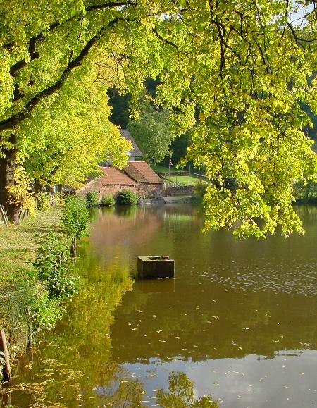 Blick auf einen nahe gelegenen Bach