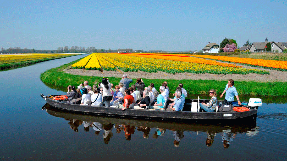 Holland Tulpentour