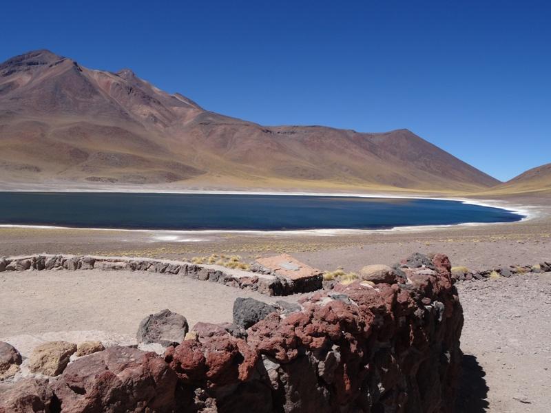 Laguna Miscanti Chile Altiplano
