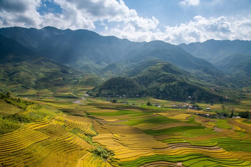 Reisfelder MU Can Chai