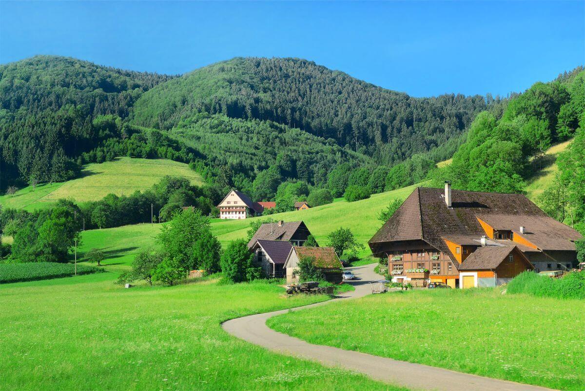 Schwarzwald Häuser Berge